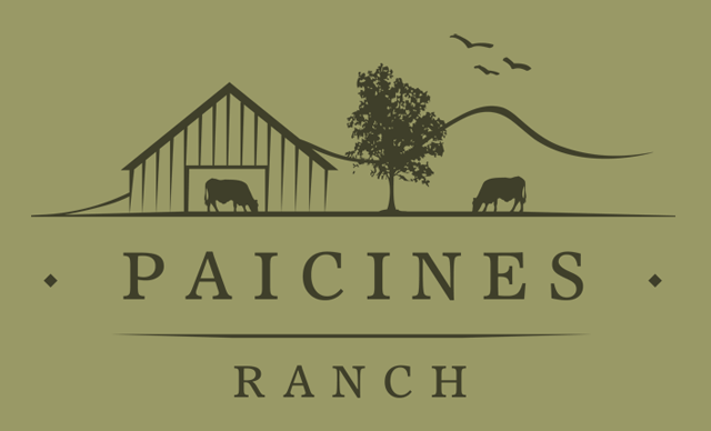 Hosted by Globetrotter Foundation and Paicines Ranch